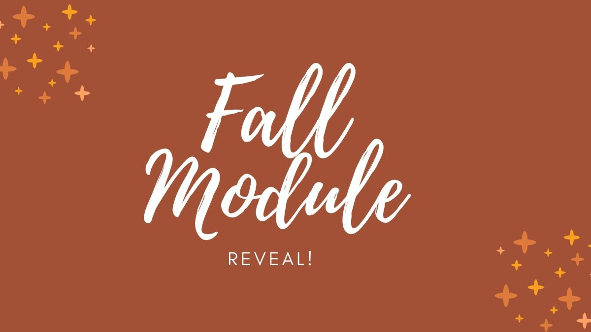 My Fall Module/// Full Reveal!