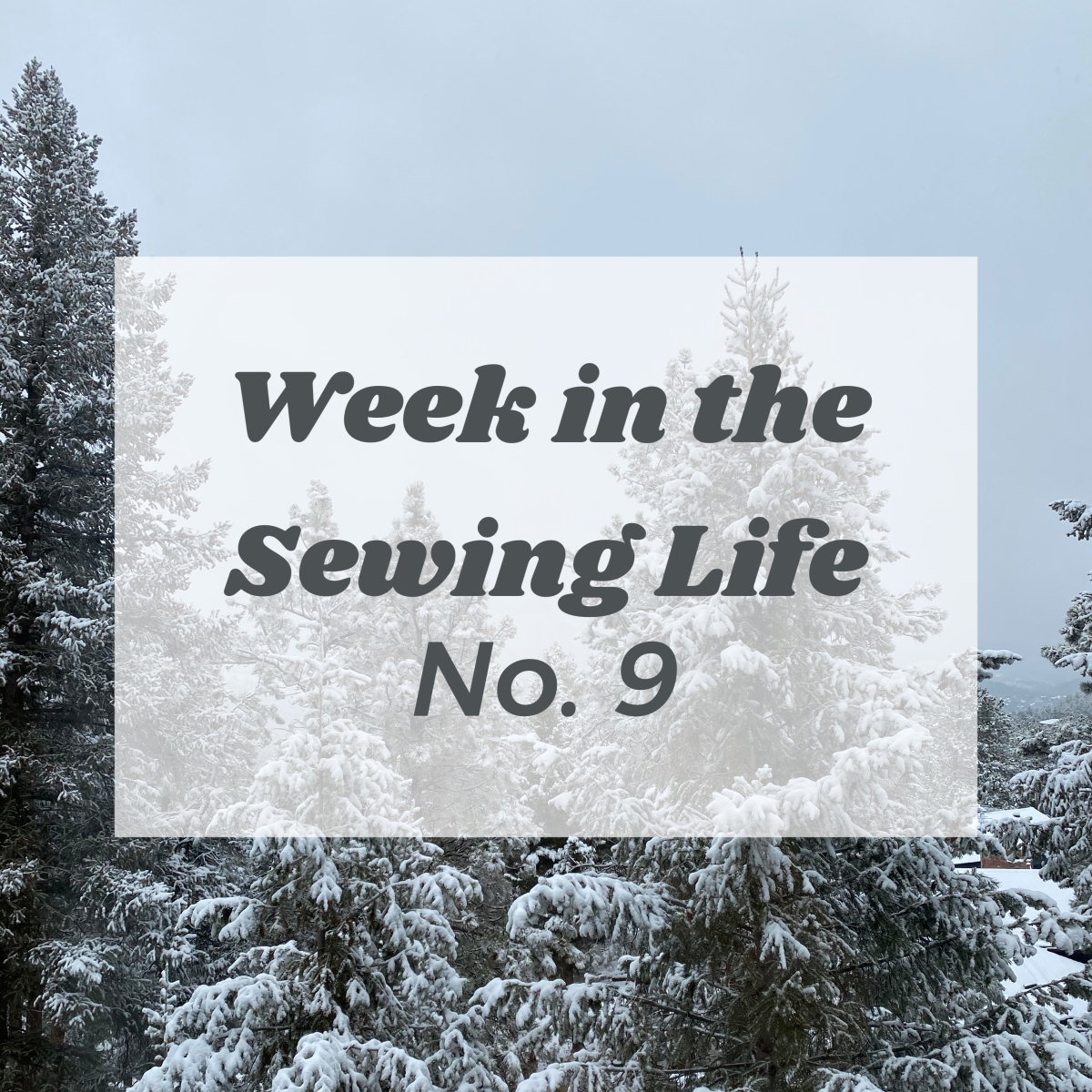 Week in the Sewing Life No.9